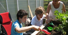 Kinder in Aktion am unterfahrbaren Hochbeet (Haus am Mühlbach)