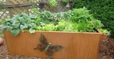 Rechteckiges Metallhochbeet mit Edelrost und Deko Schmetterling
